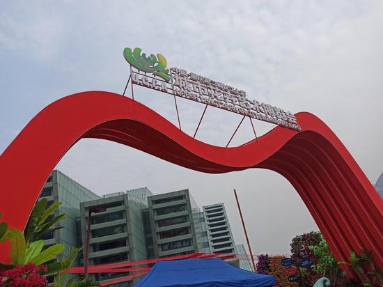 """重庆第二届""""城市花博会""""开展 领略花朵之美[组图]"""