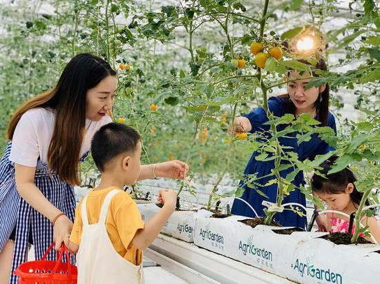 市民在位于梁平区金带街道的数谷农场游玩,体验智慧农业。李霞 摄