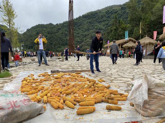 在高燕镇红军村举办的丰收节活动(摄影:张琛薇)