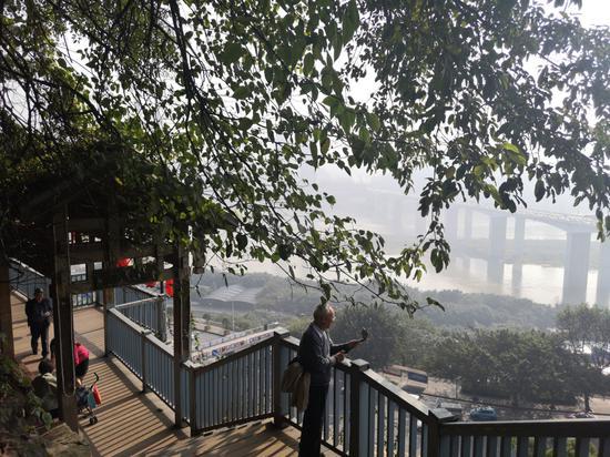 山城秋日漫步 打卡重庆最有秋天味道的步道[组图]