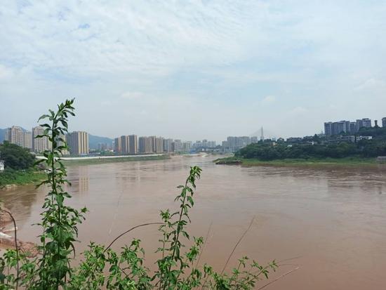 洪峰过境主城 磁器口江水上涨游客稀少