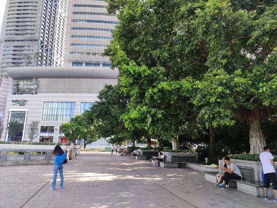 重庆高温持续 朝天门地表温度直冲60℃