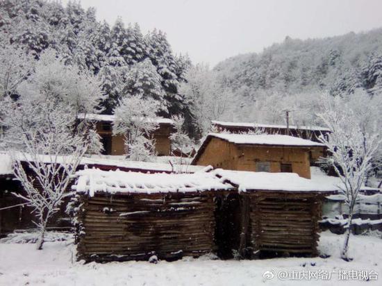 """重庆过了""""假春天"""" 部分地区3月飘雪"""