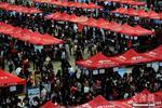 重庆周六400家企业招万余人 年薪10万岗位超500个
