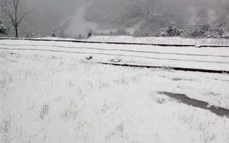一言不合就下雪 开州今天变童话世界