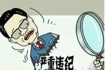 重庆巴南区原副区长范勤违规公款出国被处分