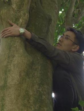 重庆发现野生大树茶 胸径世界之最