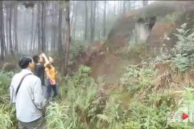 重庆密林深处现大规模神秘洞穴 或是汉朝崖墓