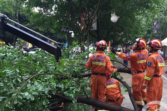 暴雨突降重庆城 多部门联合出动及时处置