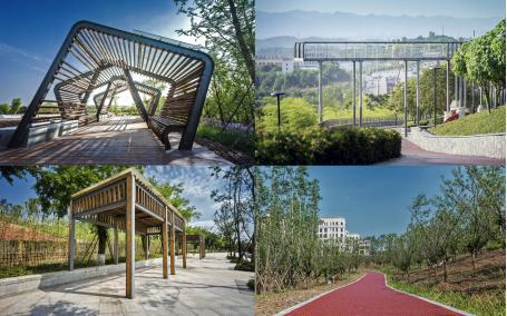 重庆生态公园环景景观工程施工组织设计(园林绿化)图片