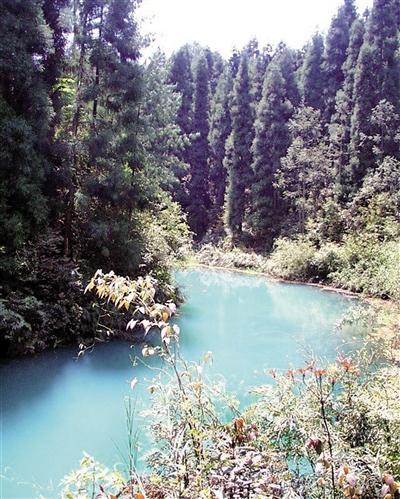 大圆洞国家森林公园。江津区委宣传部供图