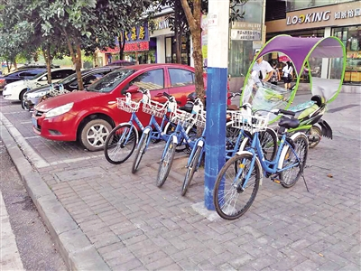 共享单车随意停放。