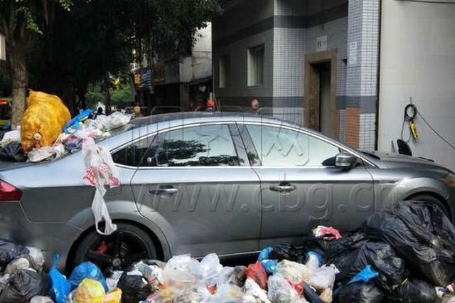 重庆:小车遭遇垃圾掩埋 求驾驶员心理阴影面积
