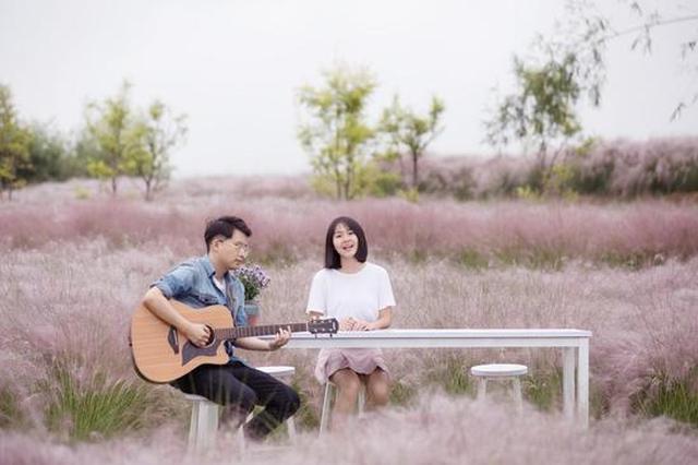 """重庆最美粉色海洋""""紫云秘境""""27日开园"""