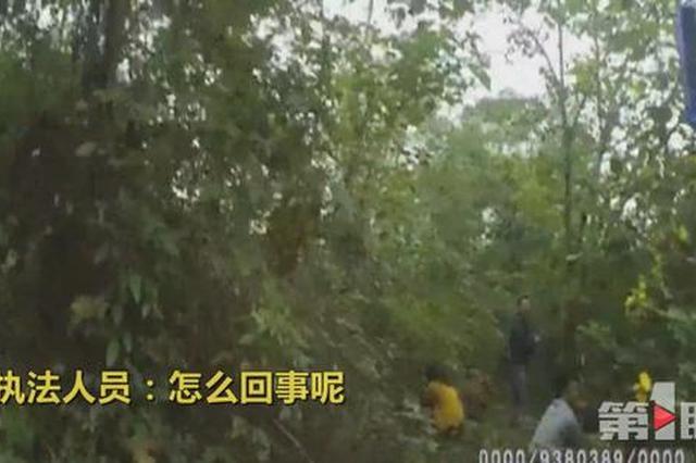 为避处罚 重庆一黑车司机竟让乘客钻高速路草丛