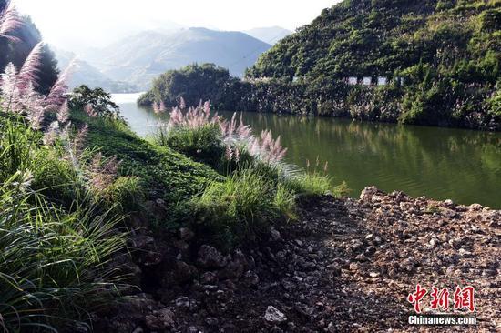 重庆一工地现大量疑似古生物化石 暂停施工送检