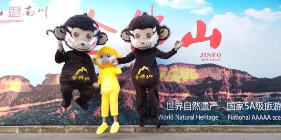 南川吉祥物黑叶猴