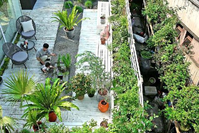 """90后小夫妻楼顶建""""花园王国"""" 种下500多种花卉"""