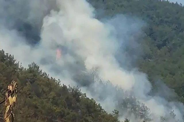 村民上坟烧纸引发山火 浓烟滚滚300余人上山灭火