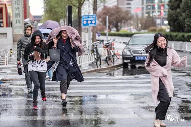 """重庆""""智能斑马线""""投用 自动预警车辆与行人"""