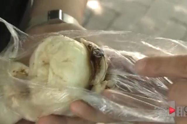 韭菜馅的包子刚咬第一口觉得不对劲 抠出来半截蟑螂