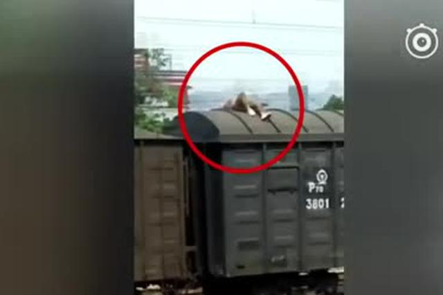 重庆一男子想当网红爬火车拍抖音 惨被高压电烧伤