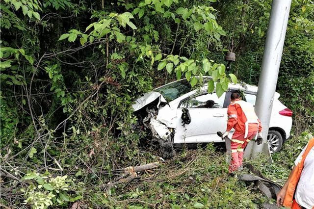 一脚油门有多凶?司机将车从高速路开进了草丛中