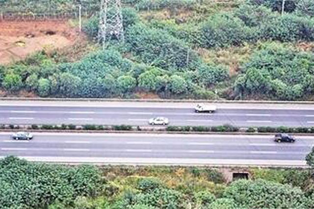 川渝两地将取消高速路省界收费站 两地实现说走就走