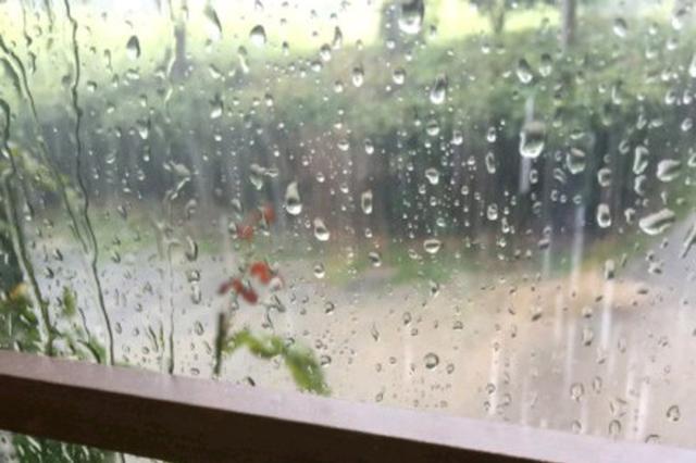 雨雨雨!重庆12个雨量站达暴雨级别