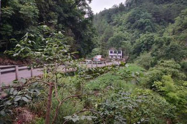 重庆:男子被山洪卷走 消失3天仍未找到
