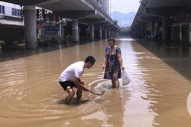 洪峰过境重庆 市民拿着漏瓢公路中间捞鱼虾(图)