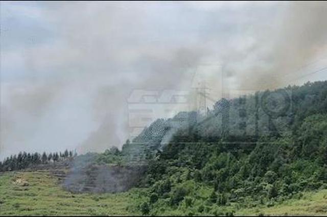 垫江太平镇发生山火 当地组织一千多人赶往现场扑救