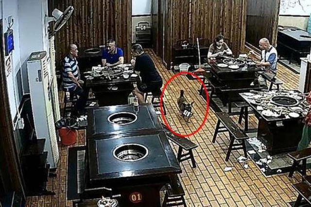 """顾客在火锅店吃饭钱包被盗 嫌疑犯原来是只""""狗"""""""