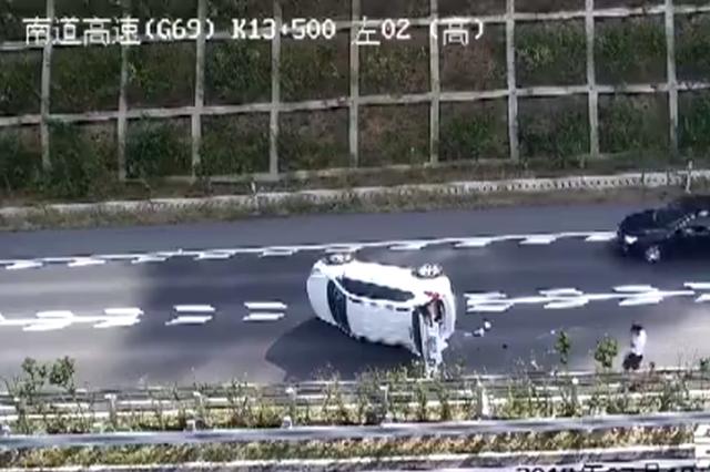 高速路窜出小狗 驾驶员一个动作导致车辆瞬间翻覆