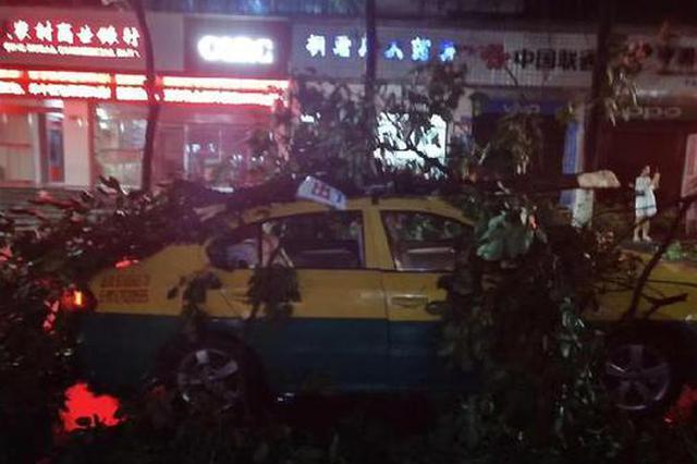 暴风雨突袭巫山 城区大面积停电路人被风吹倒