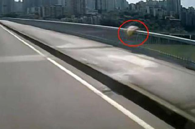 路遇女子石门大桥上正翻栏杆轻生 公交司机急刹救人