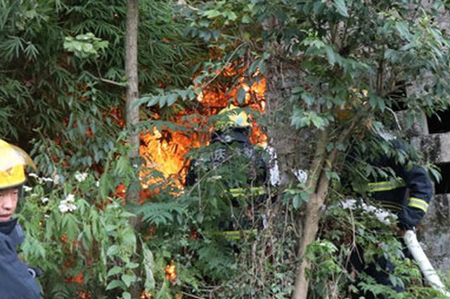 老人烧纸不等明火熄灭就走 引燃竹林威胁居民区