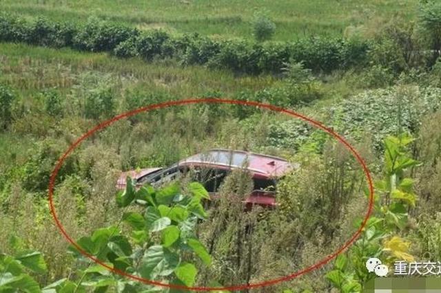 司机忘记做这件事 小车冲进农田