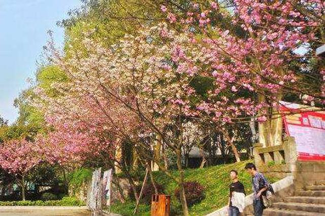 重庆邮电大学工程学学科首次进入全球排名前1%