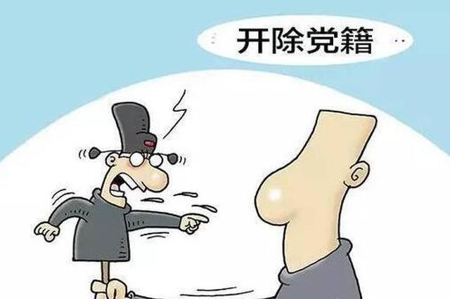 重庆一高职院校中层干部严重违纪违法被双开