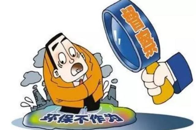 重庆全面展开中央环保督察整改专项核查工作