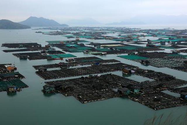 """重庆最大休闲渔业园""""川西渔村""""在梁平开园迎客"""