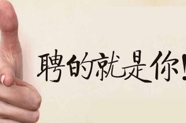 重庆这个区县招聘370人 教育卫生领域岗位过半