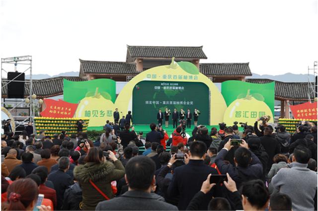 中国•重庆首届柚博会盛大开幕 这三个品类柚子获金奖