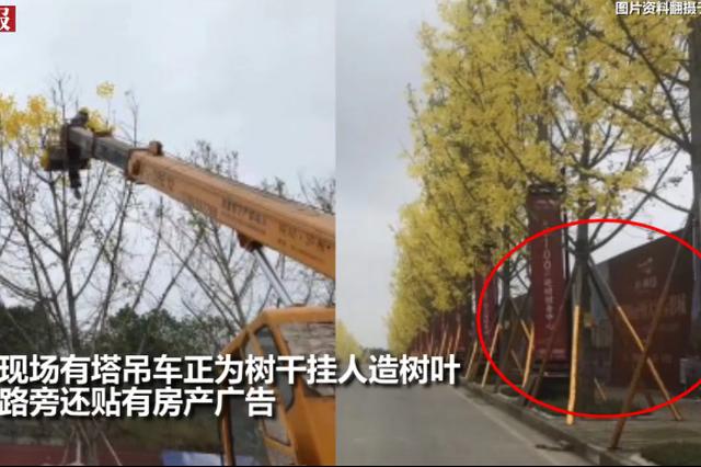 为迎接检查路边挂人造树叶?重庆官方:系商家行为