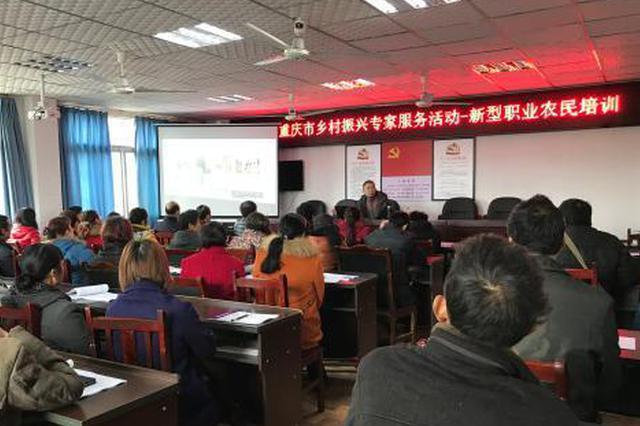 重庆:拟用19项措施培养乡村人才队伍