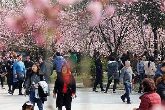 春节境外游客最爱来中国哪儿?重庆排第六