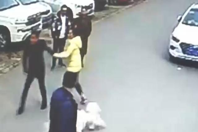 遛狗未拴绳引冲突 为护孕妻男子被打成脑震荡