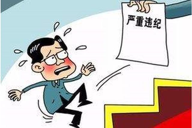 垫江县原市政园林局党委书记、局长石帮成被开除党籍和公职