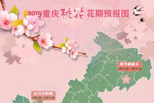 重庆桃花花期预报图出炉 原来主城也有这么多地方
